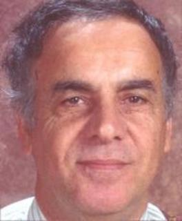 Riad Elsolh Hamad